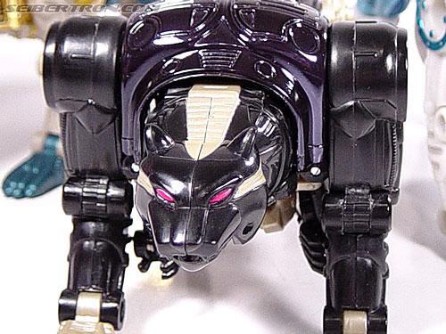 Transformers Beast Wars Metals Ravage  Jaguar   Image  22 of 112 Beast Wars Ravage