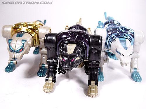 Transformers Beast Wars Metals Ravage  Jaguar   Image  25 of 112 Beast Wars Ravage
