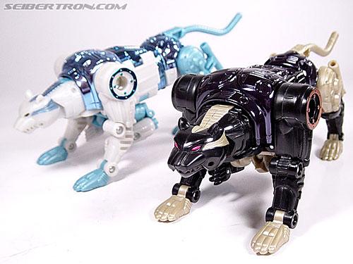 Transformers Beast Wars Metals Ravage  Jaguar   Image  27 of 112 Beast Wars Ravage