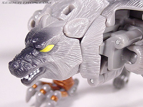 Transformers Beast Wars Metals Silverbolt (Image #16 of 56)