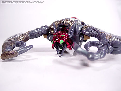 Transformers Beast Wars Metals Sonar (Image #4 of 31)