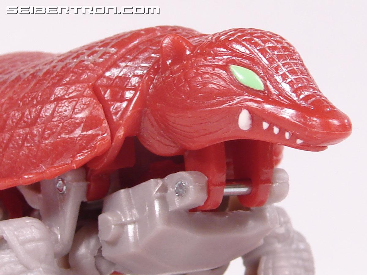 Transformers Beast Wars Neo Bump (Image #17 of 83)