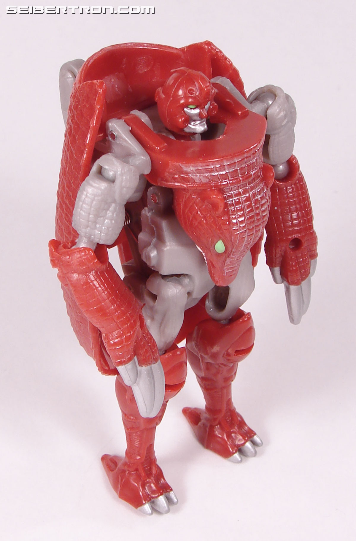 Transformers Beast Wars Neo Bump (Image #45 of 83)