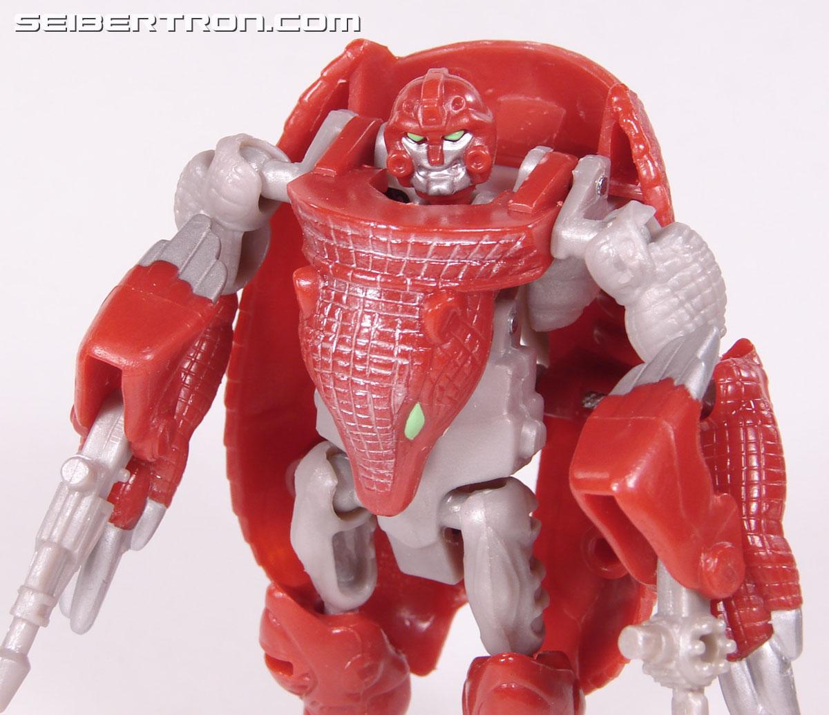 Transformers Beast Wars Neo Bump (Image #57 of 83)