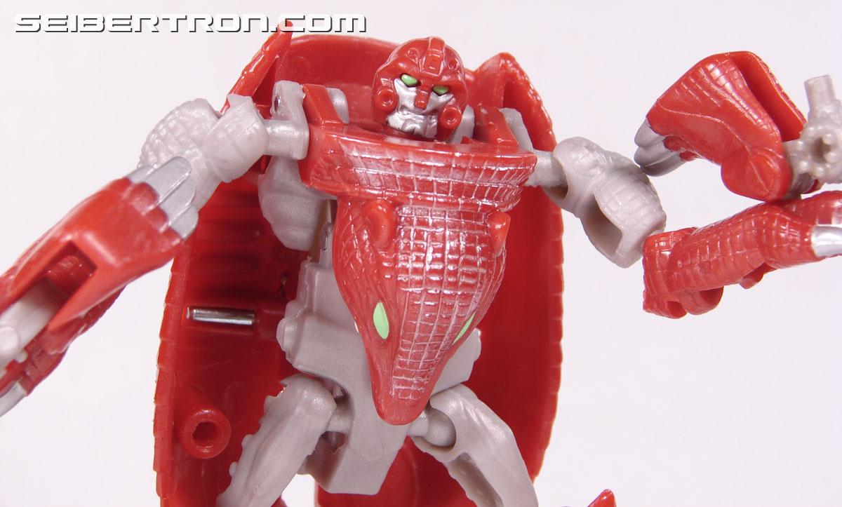 Transformers Beast Wars Neo Bump (Image #63 of 83)