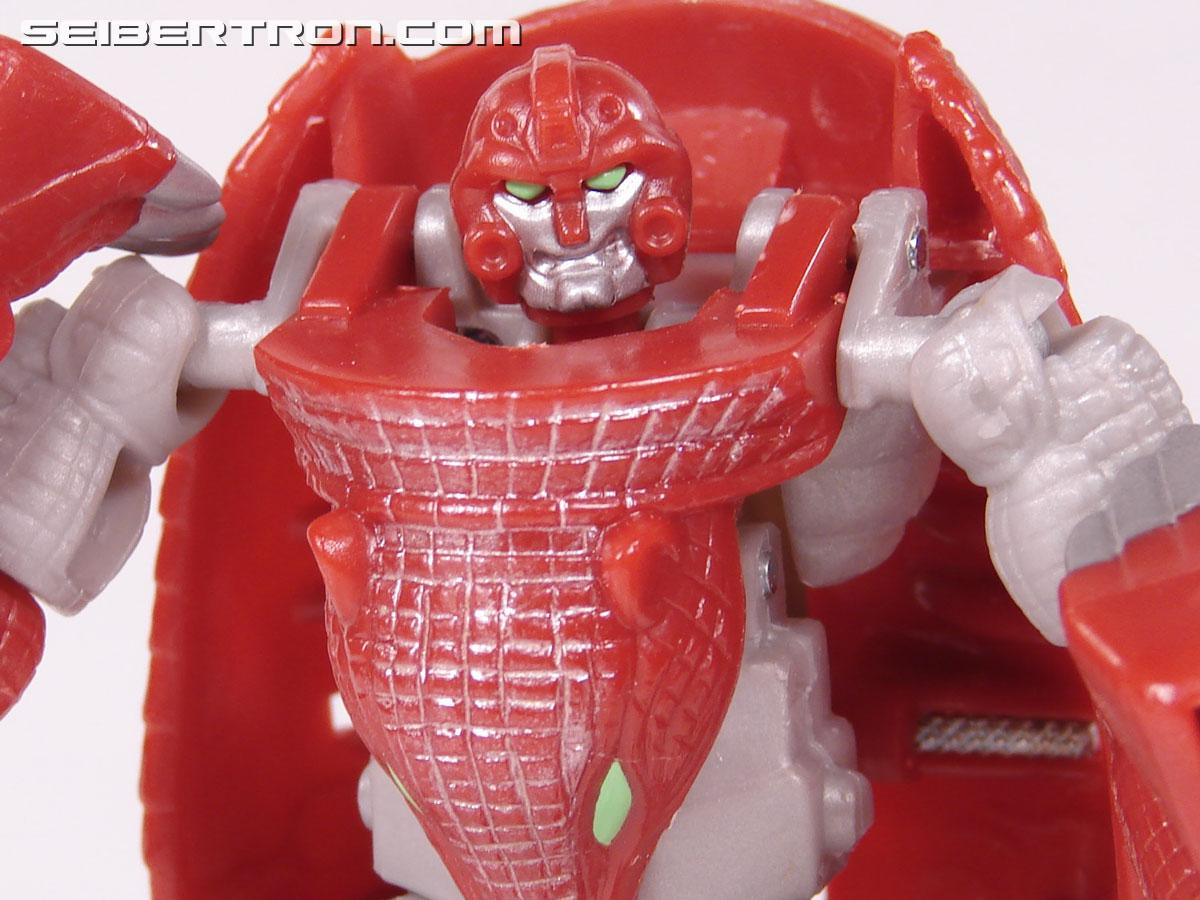 Transformers Beast Wars Neo Bump (Image #70 of 83)