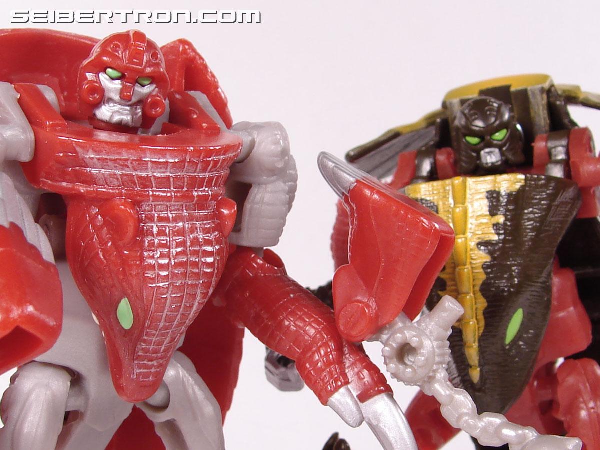 Transformers Beast Wars Neo Bump (Image #79 of 83)