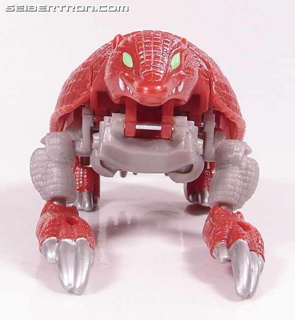 Transformers Beast Wars Neo Bump (Image #15 of 83)