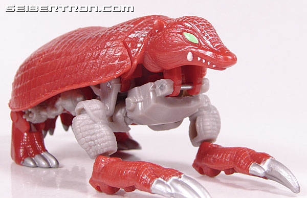 Transformers Beast Wars Neo Bump (Image #16 of 83)