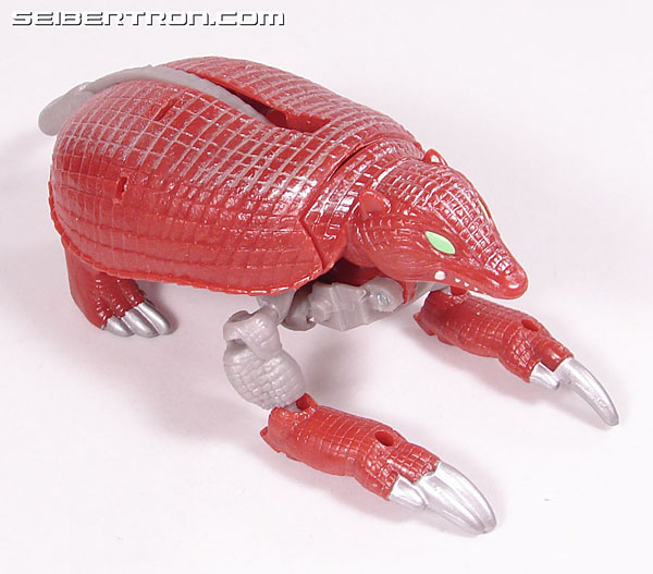 Transformers Beast Wars Neo Bump (Image #18 of 83)