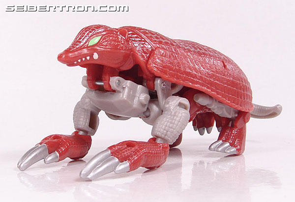 Transformers Beast Wars Neo Bump (Image #24 of 83)