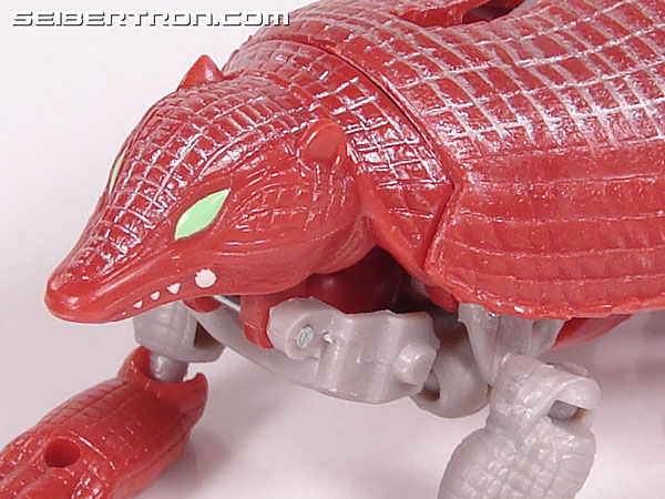 Transformers Beast Wars Neo Bump (Image #26 of 83)