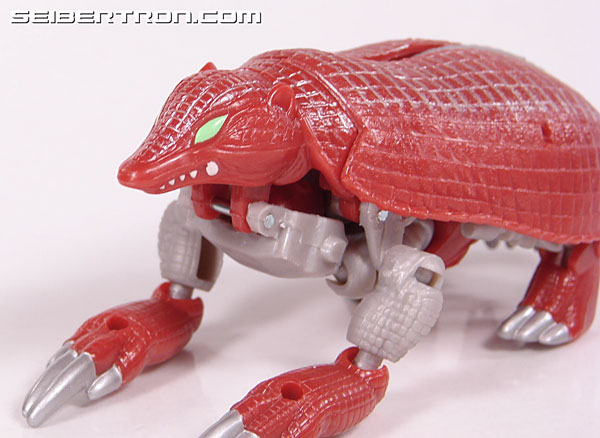 Transformers Beast Wars Neo Bump (Image #27 of 83)