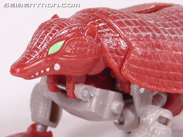 Transformers Beast Wars Neo Bump (Image #28 of 83)