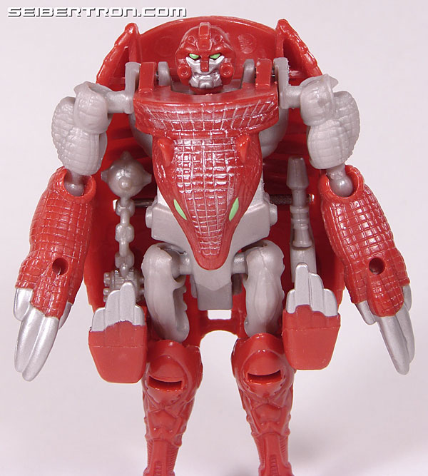 Transformers Beast Wars Neo Bump (Image #36 of 83)