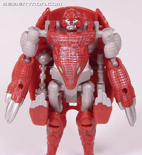 Transformers Beast Wars Neo Bump (Image #38 of 83)