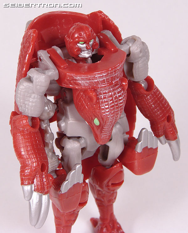 Transformers Beast Wars Neo Bump (Image #40 of 83)