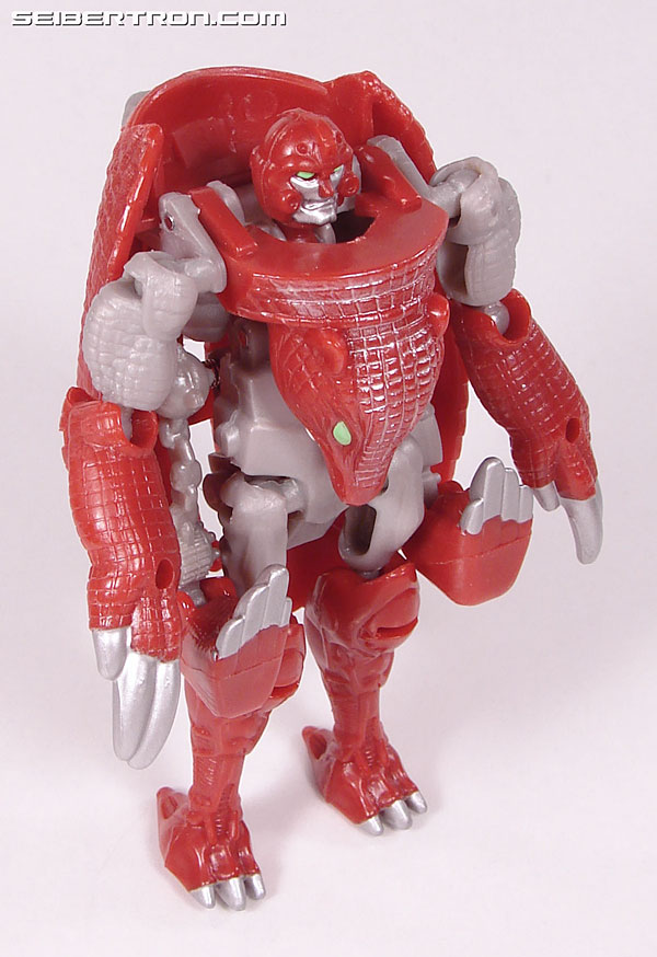Transformers Beast Wars Neo Bump (Image #43 of 83)