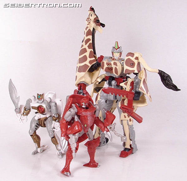 Transformers Beast Wars Neo Bump (Image #82 of 83)