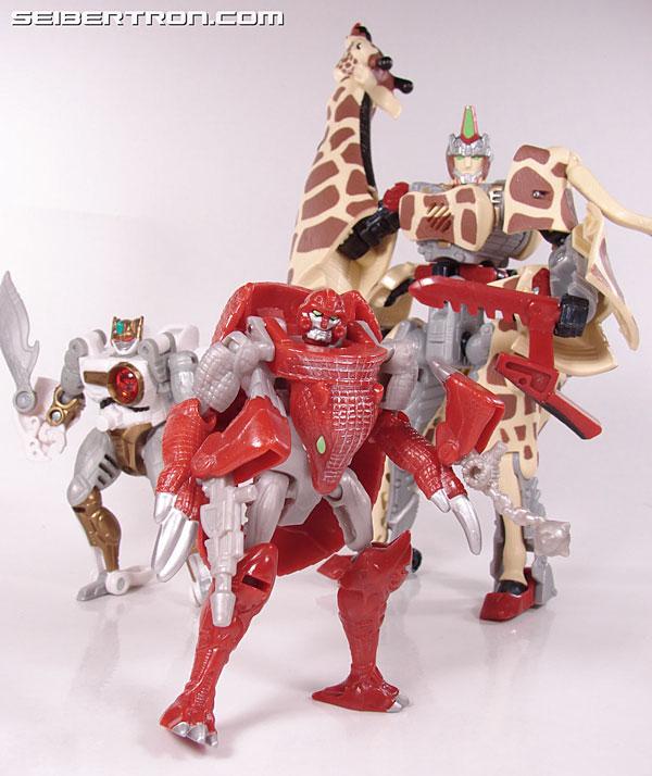 Transformers Beast Wars Neo Bump (Image #83 of 83)