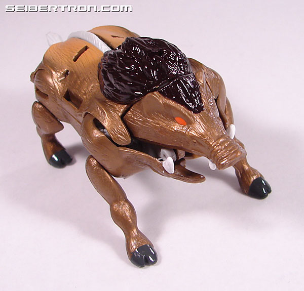Transformers Beast Wars Neo Randy (Image #15 of 69)