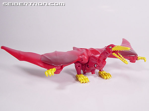 Transformers Beast Wars Neo Skysaur (Image #4 of 15)