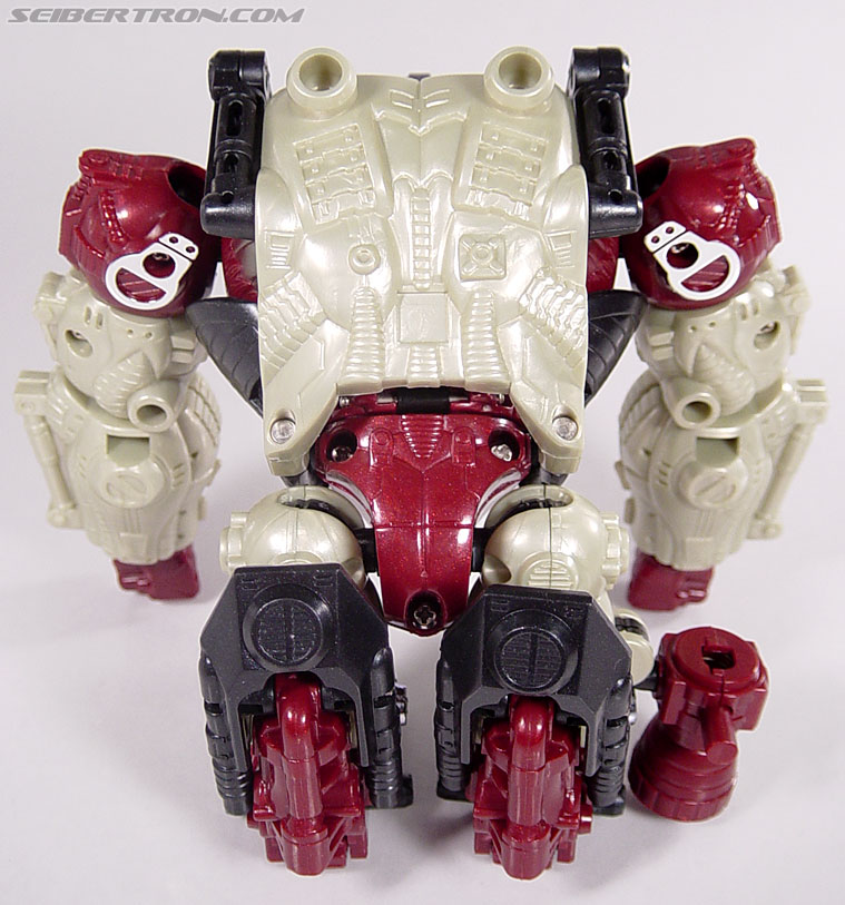 Transformers BotCon Exclusives Apelinq (Image #24 of 84)