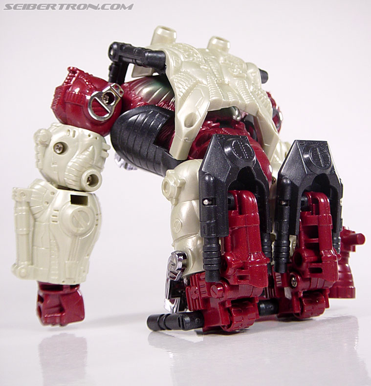 Transformers BotCon Exclusives Apelinq (Image #25 of 84)