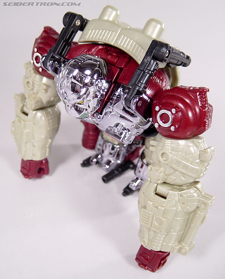 Transformers BotCon Exclusives Apelinq (Image #29 of 84)