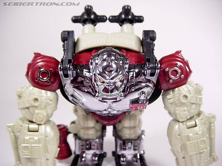 Transformers BotCon Exclusives Apelinq (Image #35 of 84)