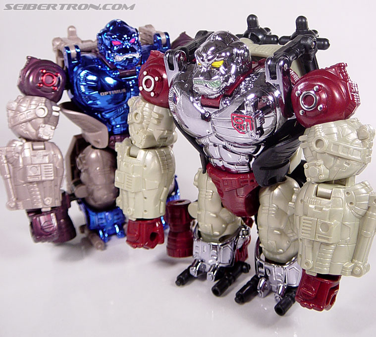 Transformers BotCon Exclusives Apelinq (Image #40 of 84)