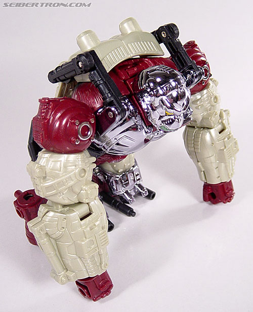 Transformers BotCon Exclusives Apelinq (Image #20 of 84)