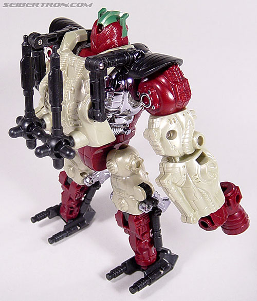 Transformers BotCon Exclusives Apelinq (Image #68 of 84)