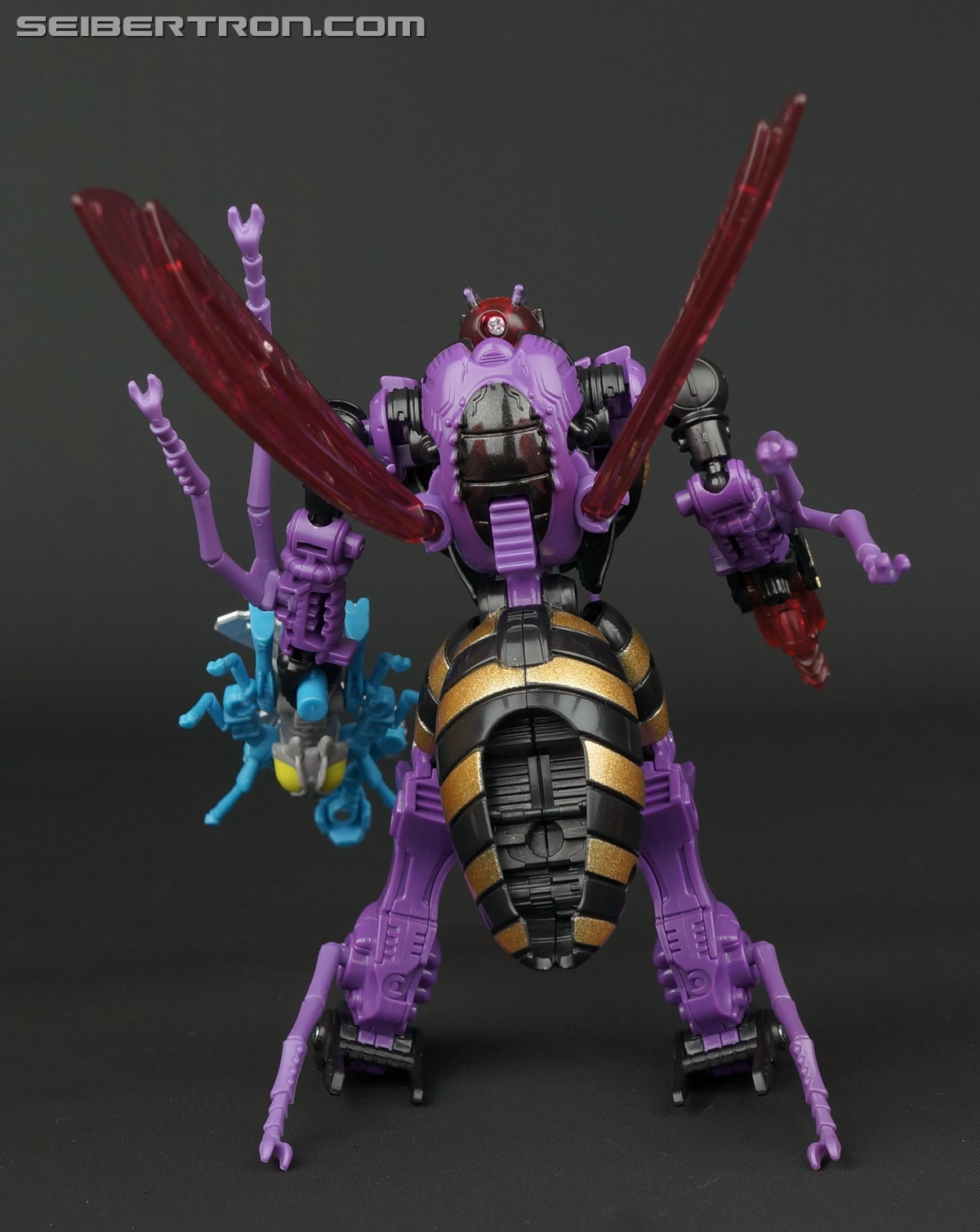 Transformers BotCon Exclusives Waruder Parasite Drone (Image #59 of 109)