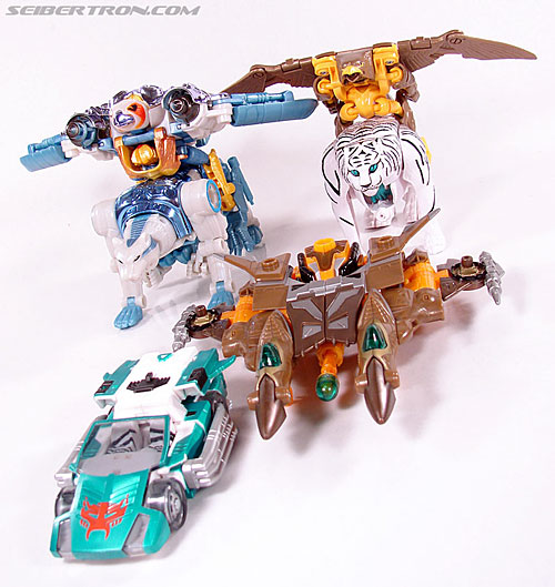 Transformers Club Exclusives Airazor (Chromia 10 Pilot) (Image #55 of 132)