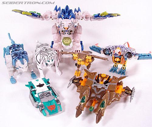 Transformers Club Exclusives Airazor (Chromia 10 Pilot) (Image #57 of 132)