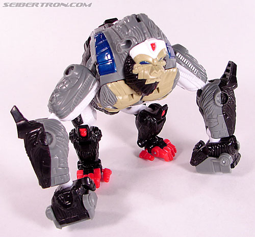 Transformers Beast Wars (10th Anniversary) Optimus Primal (Image #22 of 127)