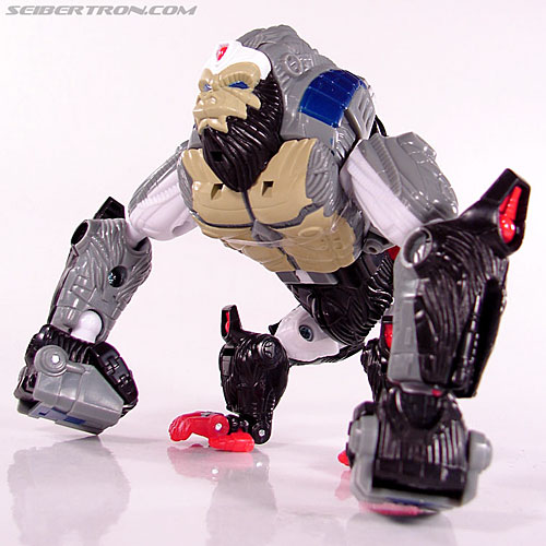 Transformers Beast Wars (10th Anniversary) Optimus Primal (Image #30 of 127)