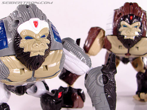 Transformers Beast Wars (10th Anniversary) Optimus Primal (Image #33 of 127)