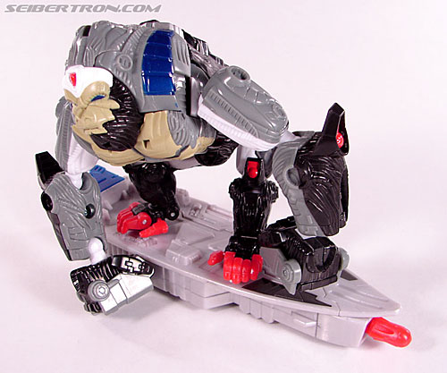 Transformers Beast Wars (10th Anniversary) Optimus Primal (Image #37 of 127)