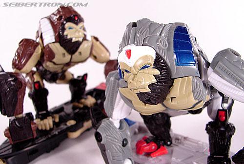 Transformers Beast Wars (10th Anniversary) Optimus Primal (Image #49 of 127)