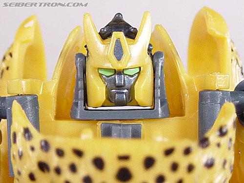 Beast Wars (10th Anniversary) Cheetas gallery
