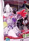 Beast Wars (10th Anniversary) Optimus Primal - Image #4 of 127