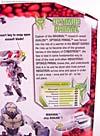 Beast Wars (10th Anniversary) Optimus Primal - Image #10 of 127