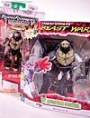 Beast Wars (10th Anniversary) Optimus Primal - Image #19 of 127