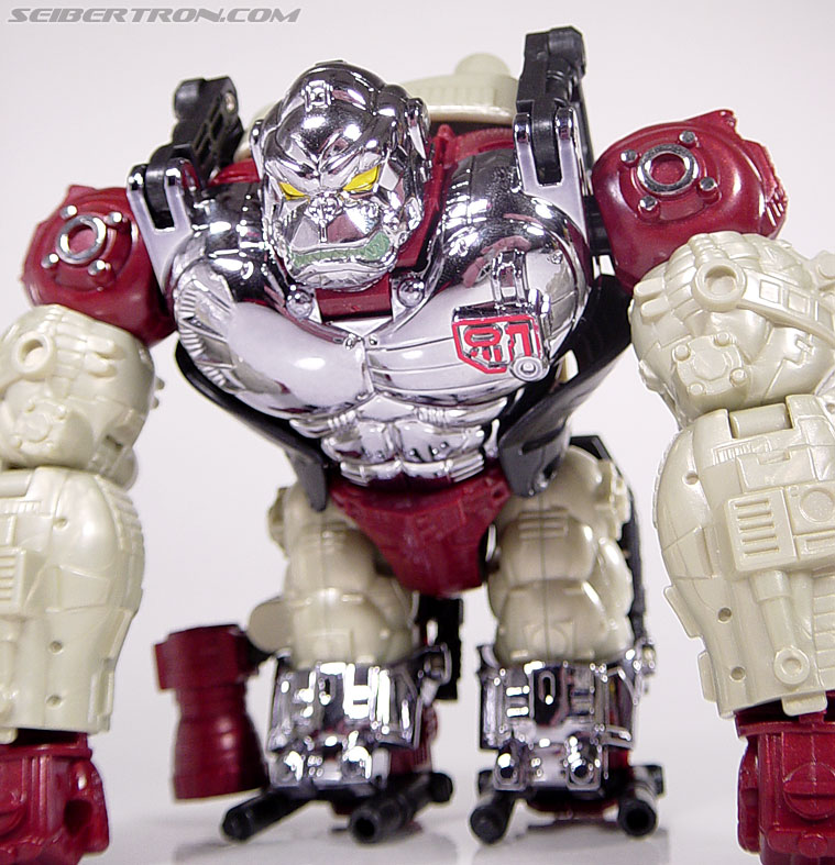 Transformers Convention & Club Exclusives Apelinq (Image #32 of 84)