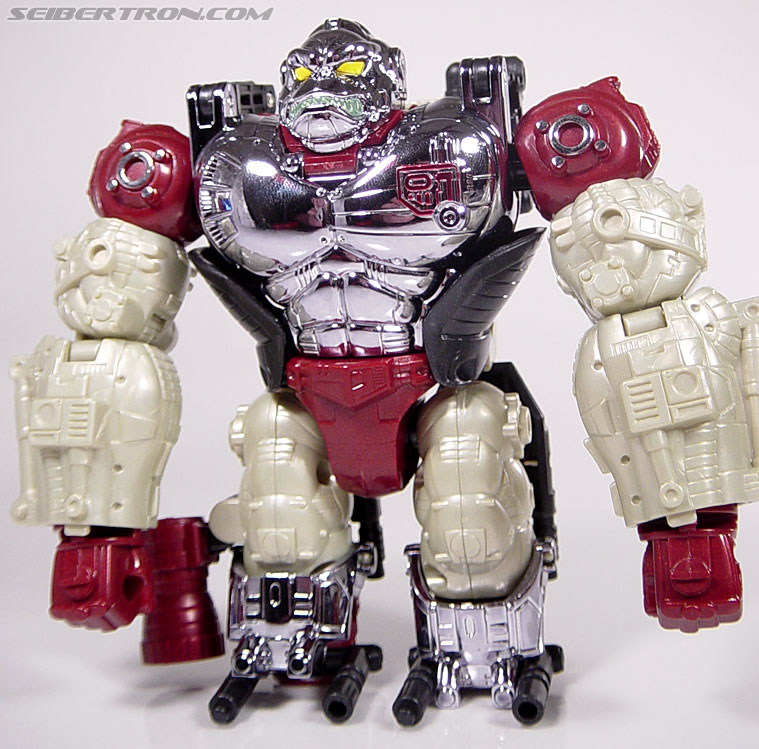 Transformers Convention & Club Exclusives Apelinq (Image #36 of 84)