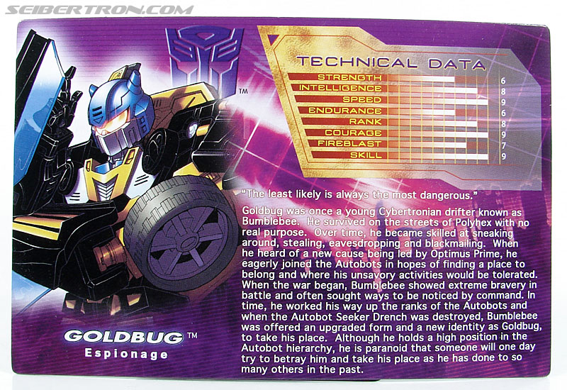 Transformers Convention & Club Exclusives Goldbug (Image #38 of 94)