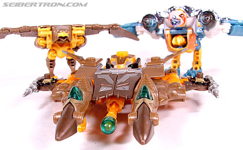 Transformers Convention & Club Exclusives Airazor (Image #49 of 132)