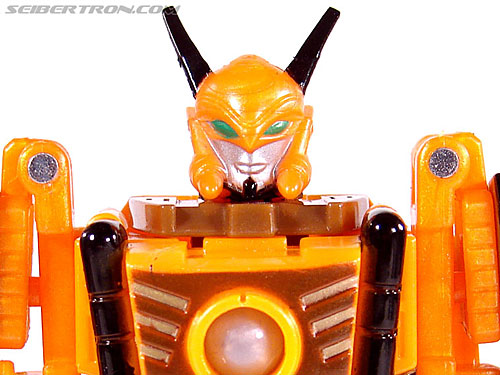 Transformers Convention & Club Exclusives Airazor (Image #72 of 132)
